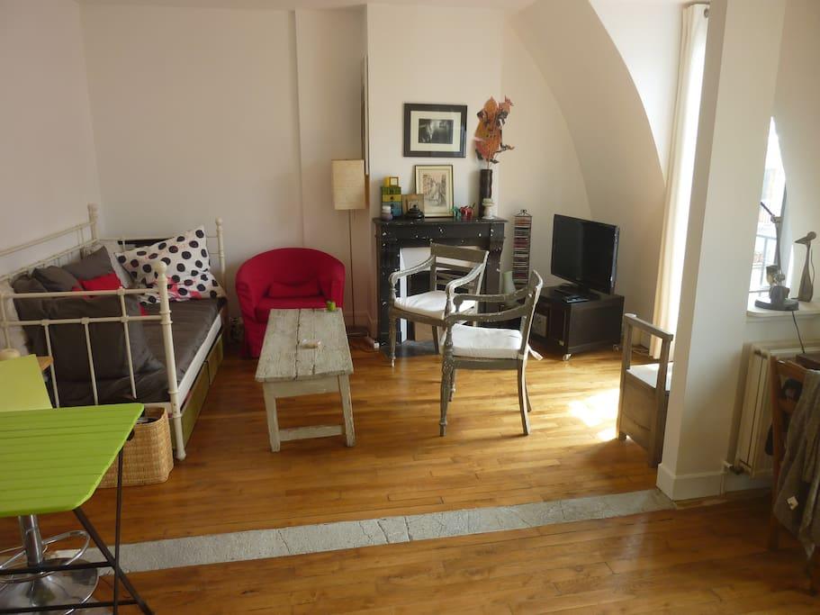 Une partie du Salon avec cheminée - calme et lumineux