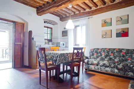 Torrino in Bibbona with Terrace - Wohnung