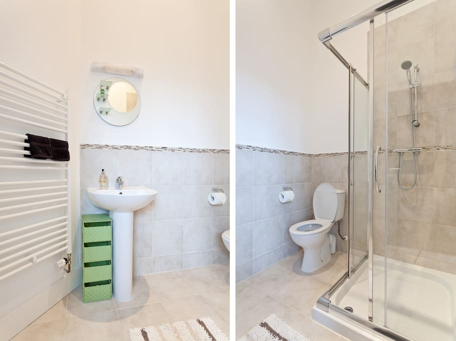 Private ensuite with washbasin, toilet and shower.