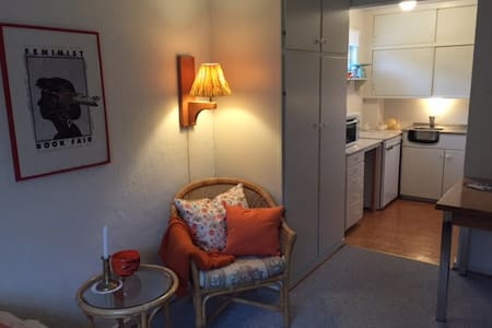 Quiet and neat apartement. FREE parking - Apartment