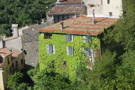 Old Mansion,Provence, close to NICE - Apartment