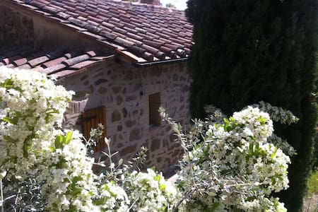 TUSCANY MAREMMA Scansano Country Home hgt 400m - Blockhütte