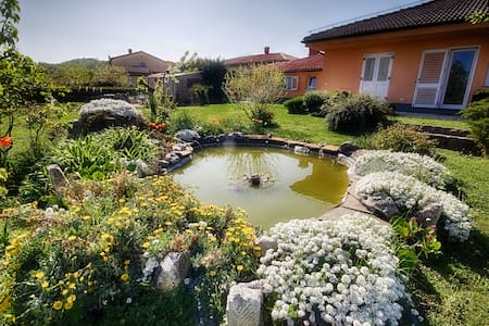 Apartments Malija Izola Istria  - Huoneisto