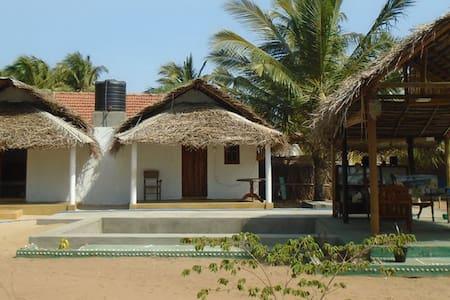 Kite Bay Kalpitiya - Bed & Breakfast
