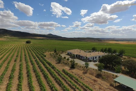 Habitación Encina en hotel rural Finca El Romeral - Alpera - House