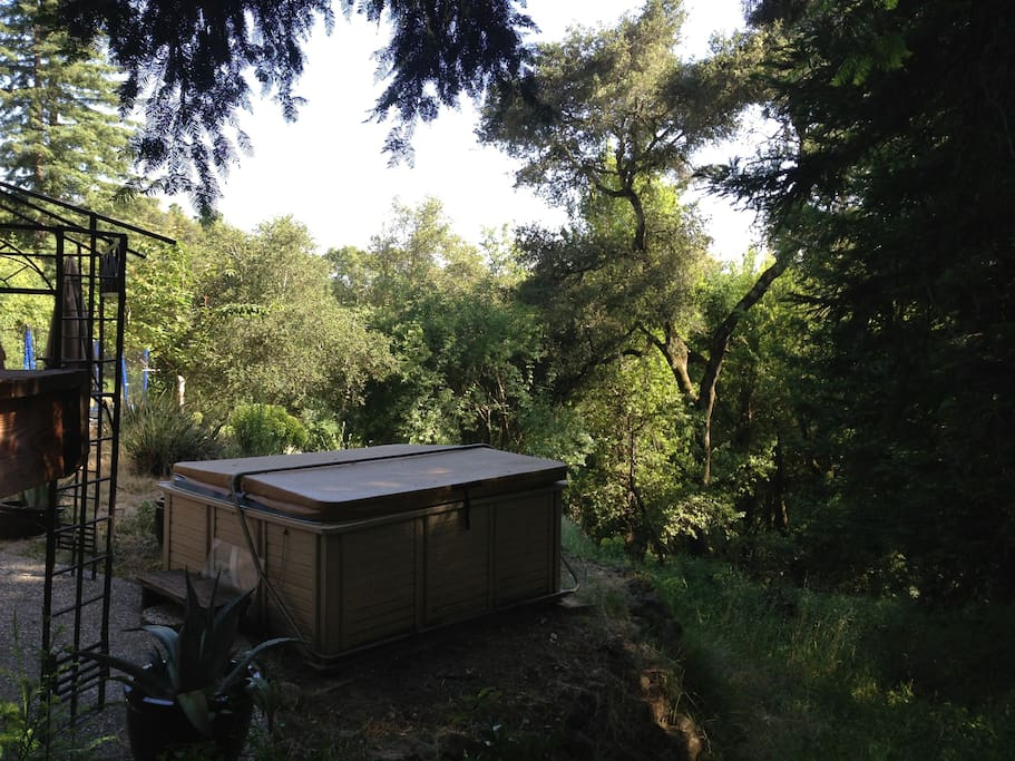 Hot tub with redwoods by day and awesome stars by night - shared with main house