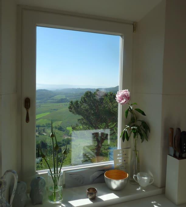 4 undisturbed window views like this from the big modern kitchen