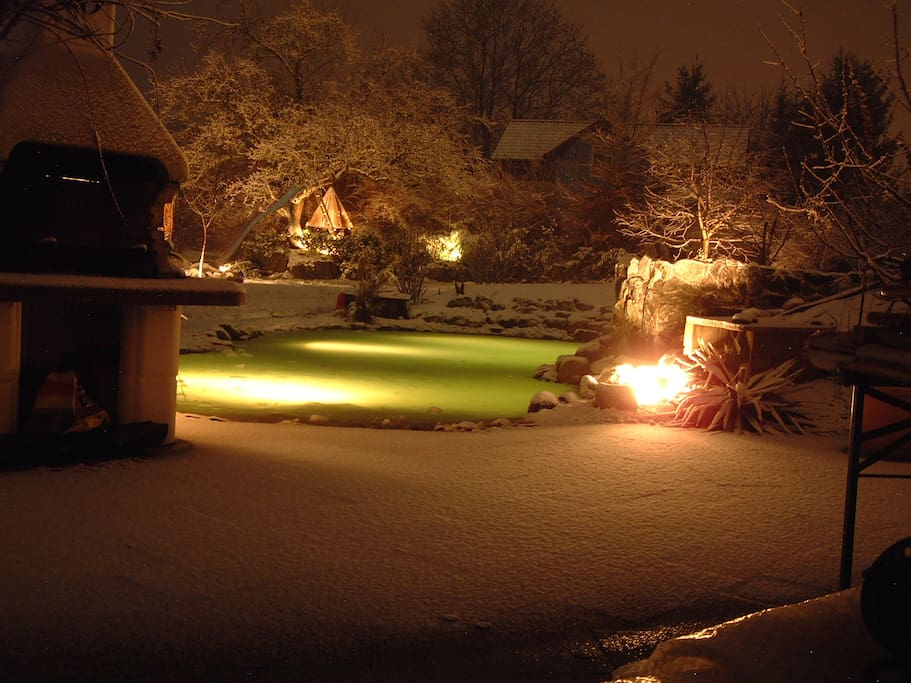 Pool and garden at night in winter