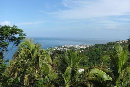 Dominica - Caribbean Nature Isle - Castle Comfort - Rumah
