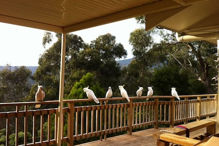 Treetops home - Lilydale