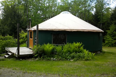 Yurt In The Woods - Hartland - Rundzelt
