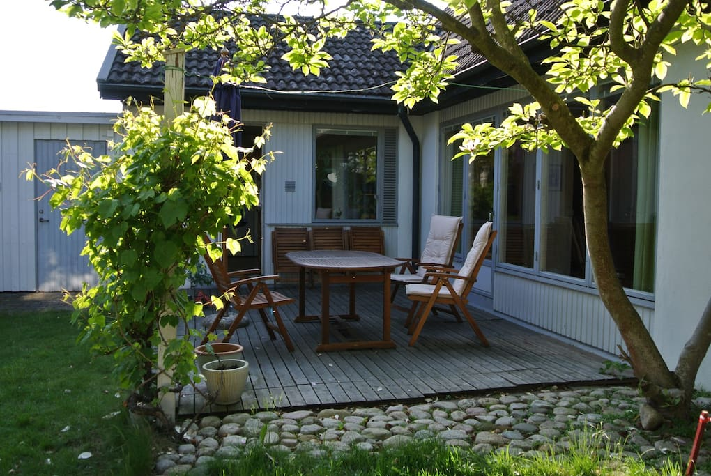 Beautiful grapevine and a magnolia tree framing the outdoor dining area.