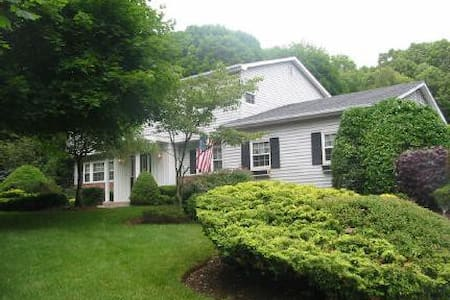 Large Family Home in Dix Hills - Hus