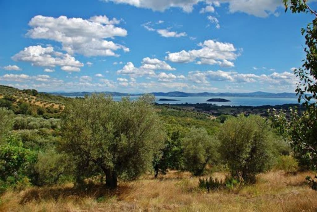 The best rooms on Trasimeno Lake