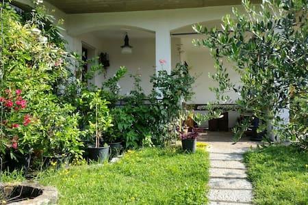 Appartamento in villa immerso nel verde - Villa