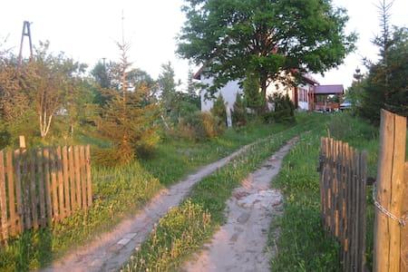 bermuda triangle in rural poland  - Ev