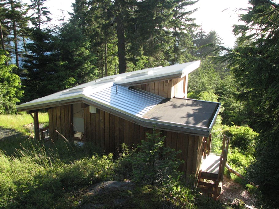 Little Nest is surrounded by views of sea, forest, and sky.