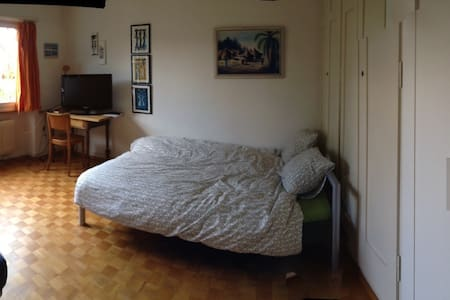 Room in big cosy apartment for 1-3p - Bern - Wohnung