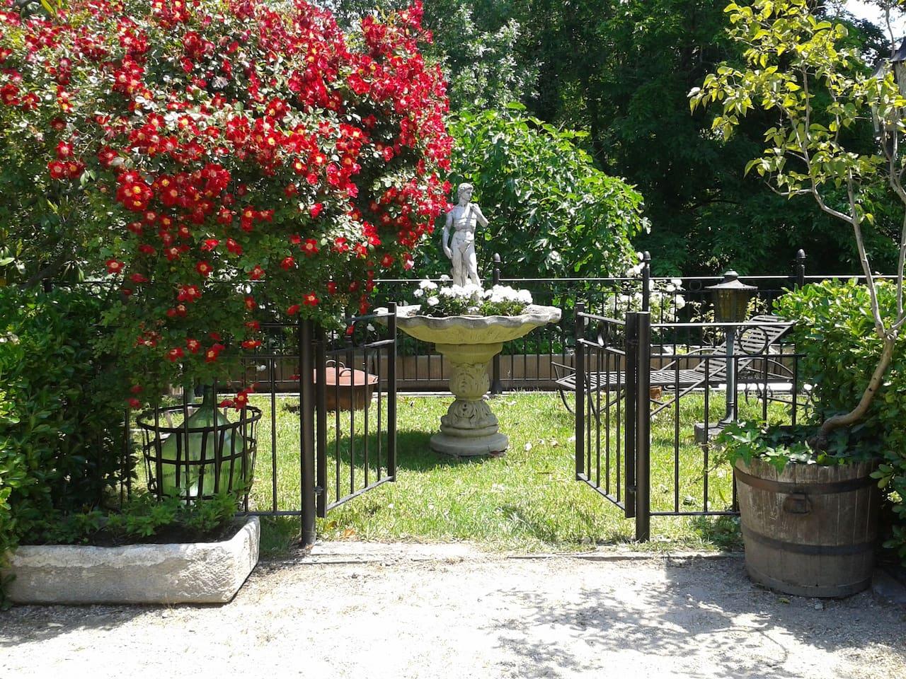 Jardin qui donne sur la Sorgue