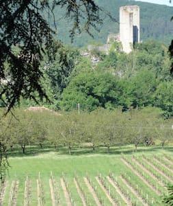 Tussen de wijnvelden van Zuid-Frankrijk - Apartament
