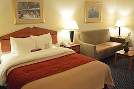 Boston Comfort Inn Hotel room - Boston - Loft