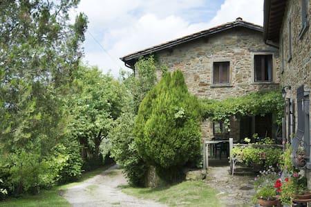 """""""Il vecchio appartamento"""" breathe Tuscan history - Appartamento"""