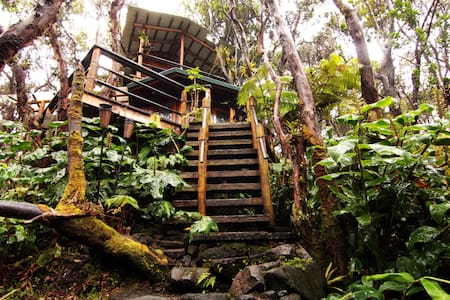 Treehouse at Kilauea Volcano - Volcano - Δεντρόσπιτο