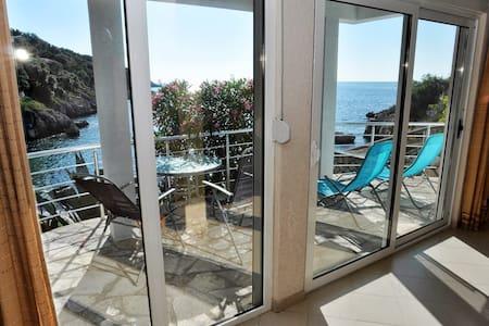 "Apartment ""Garden"" Beachfront Villa"