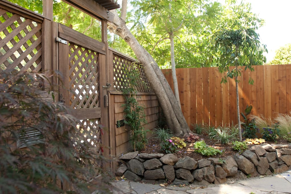 Garden entryway, studio has separate entrance - just 3 short blocks to downtown Mill Valley. Great hiking is close by too!
