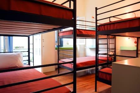 chameleon youth hostel doorms