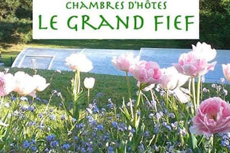 Chambres d'hôtes LE GRAND FIEF Ch 1 - Bed & Breakfast