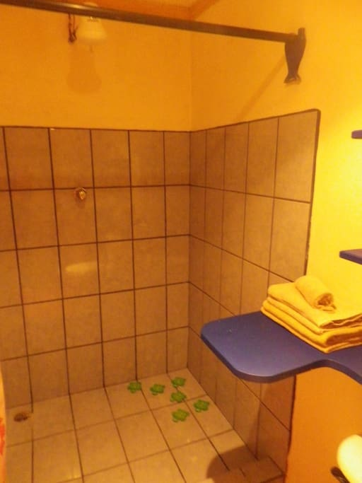 Room w/ private bathroom & 2 beds