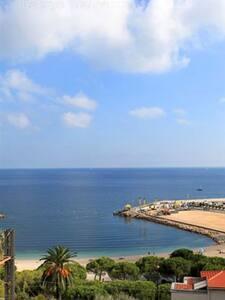 bel appartement villa, vue mer - Beaulieu-sur-Mer - Apartment