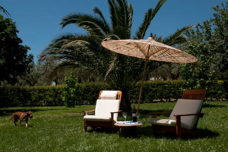 Villa, tennis & pool countryside - Ferruti - Vila