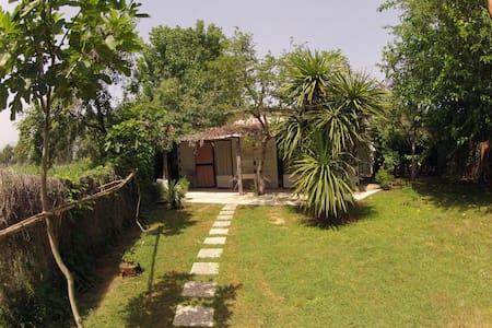 RioClaro Fondi - bungalow (LT) - Hytte