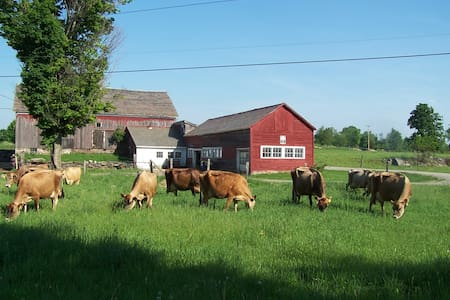 Come stay on a real VT dairy farm! - Rumah
