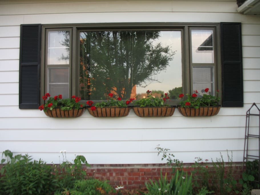 The window planters!  I was so excited to get these up and planted. One of those things we finally got around to adding.