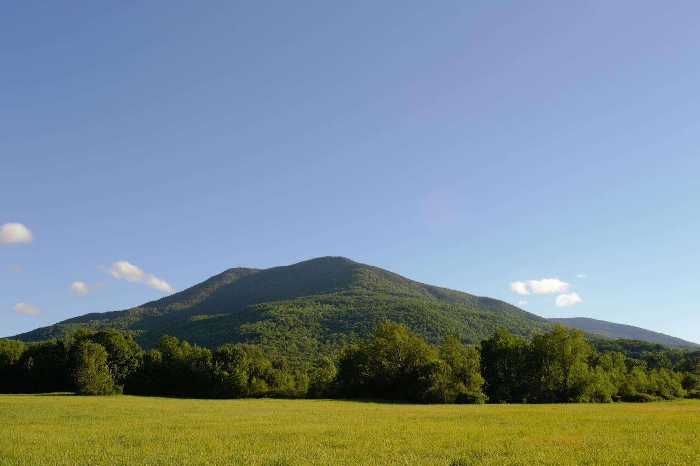 There are great views of Mount Dorset from all over the grounds