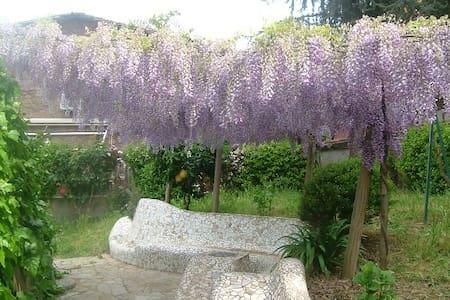 S.Peter romantic Studio whit garden