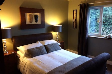 Large double room with garden view - Bristol - House