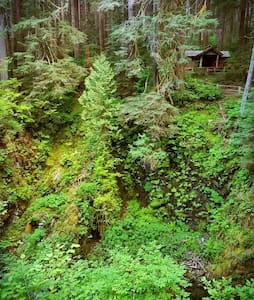 Rustic Lake Chalet-Hiker's Paradise - Port Angeles - Stuga