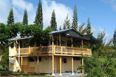The mango house is just right for a couple or even a few guests. Lots of glass and plenty deck space, a huge kitchen stocked with organic breakfast fixins' and very private. Come see for yourself!