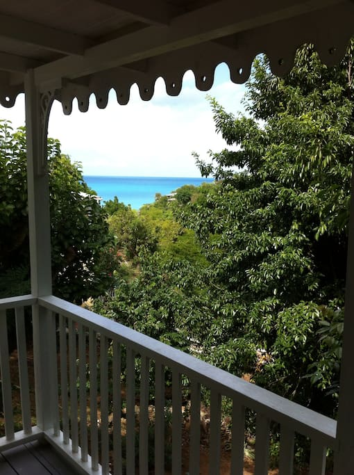 Spice at Galley Bay Cottages