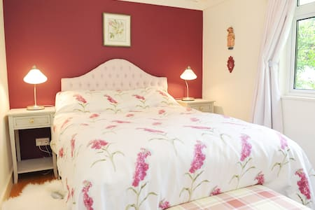 Homely B&B in Irish countryside - Bed & Breakfast