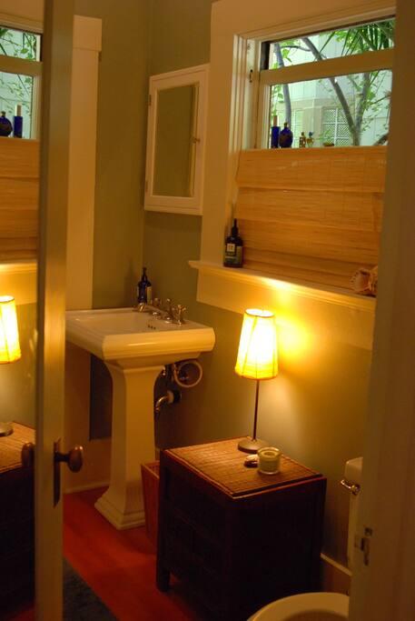 very clean retro bathroom / good water pressure in shower