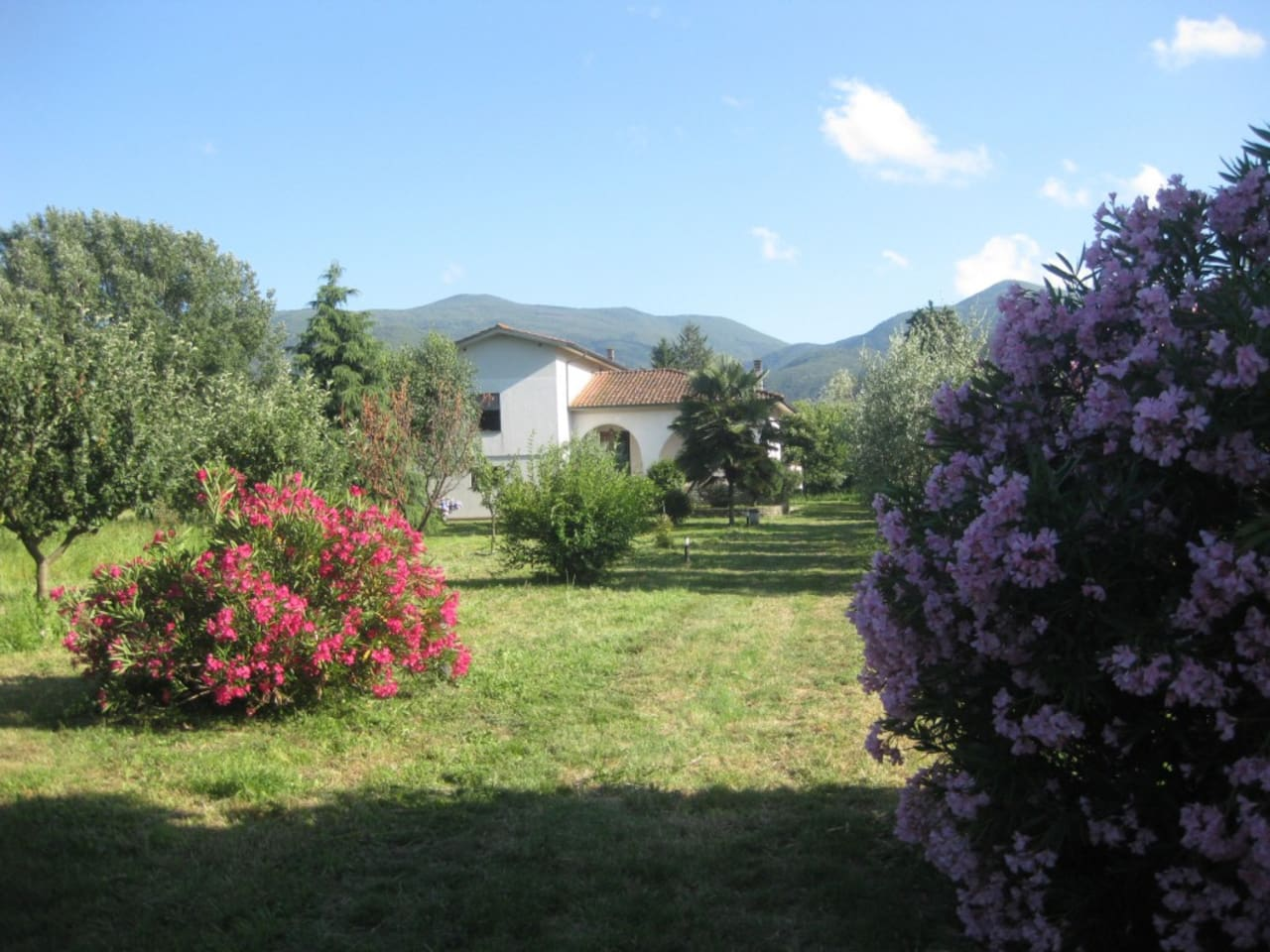 Country house near Lucca