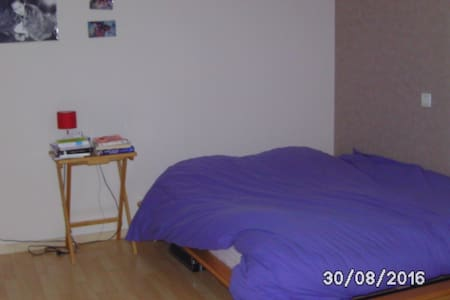 Grde chambre + sdb privative - quartier très calme - Besançon