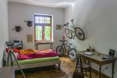 Big and cosy room in well located appartment - Apartment