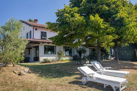 House in the vineyards - Gavi - Villa