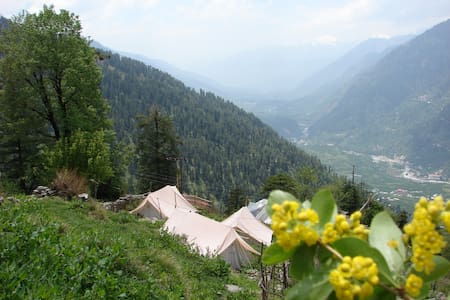 Backwoods Mountain Camp Hamta - Manali - Tent